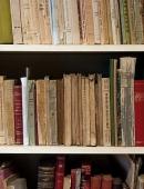 Teresa Rovira, escriptora / Biblioteques Particulars de Barcelona  Editorial: Ajuntament de barcelona.